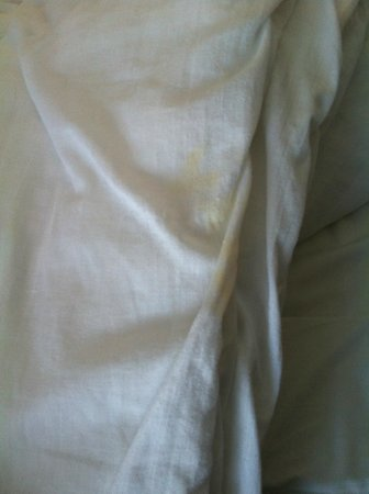 Ewloe, UK: Room 119-Stain On Duvet